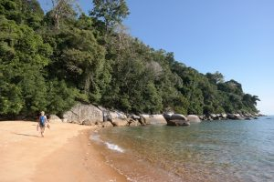 Tioman Island, Monkey beach