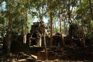 Ta Nei, Siem Reap